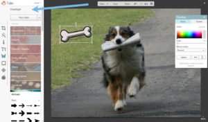 picmonkey tutorial dog image merge2
